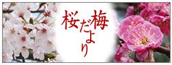 梅桜だより.jpg