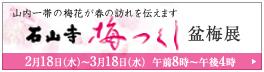 石山寺梅つくし盆梅展.jpg