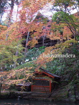 20091125-1本堂と閼伽井.jpg