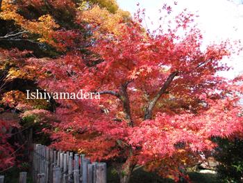 20091127-2拾翠園.jpg