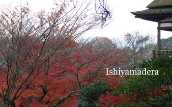 20091128-1月見亭.jpg