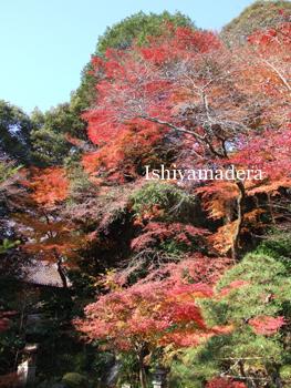 20091201拾翠園.jpg