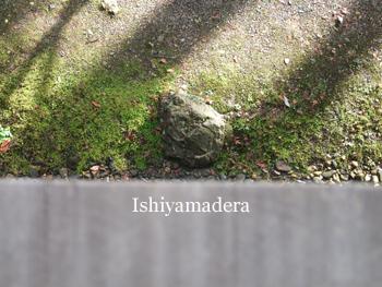 20091212-3目印の石 上から.jpg
