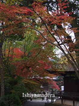 20111128-7.jpg