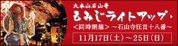 2012 紅葉ライトアップ.jpg