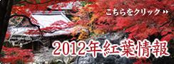 2012 紅葉情報.jpg