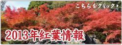 2013 紅葉情報.jpg